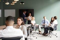 Mulher de negócios And Businessman Collaborating na tarefa junto no dia graduado da avaliação do recrutamento imagem de stock