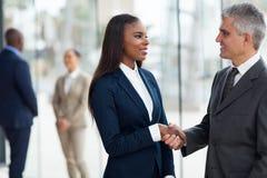 Mulher de negócios do aperto de mão do homem de negócios Imagem de Stock