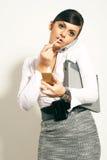 Mulher de negócios do brunet de Atractive Imagem de Stock