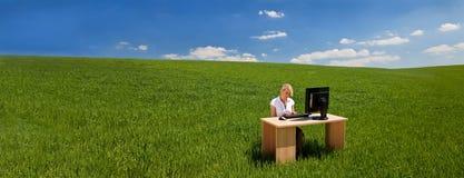 Mulher de negócios do panorama que usa o computador em uma mesa na bandeira verde do campo fotografia de stock royalty free