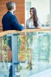 Mulher de negócios elegante Chatting com colega imagens de stock royalty free