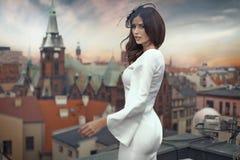 Mulher de negócios elegante na parte superior da construção Imagem de Stock