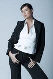 Mulher de negócios (Fria-Ver) Imagem de Stock Royalty Free