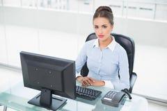 Mulher de negócios moreno focalizada que senta-se em sua mesa Fotos de Stock