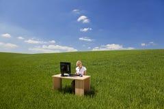 Mulher de negócios que usa o computador em um campo verde Fotografia de Stock