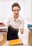 Mulher de negócios! Imagens de Stock Royalty Free