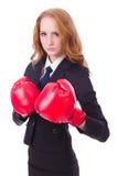 Mulher de negócios da mulher com luvas de encaixotamento Fotos de Stock Royalty Free