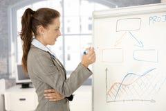 Mulher de negócios nova que apresenta no escritório Imagem de Stock Royalty Free