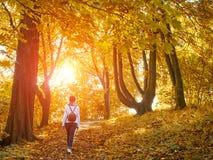 Mulher de passeio na floresta do outono imagens de stock