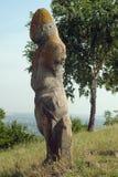 Mulher de Polovtsian nos estepes ucranianos Fotografia de Stock