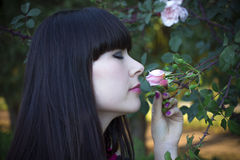 Mulher de Rosa imagens de stock royalty free