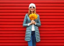 A mulher de sorriso do outono da forma guarda as folhas de bordo amarelas em suas mãos Foto de Stock