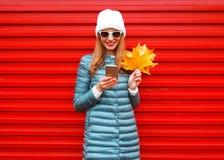 A mulher de sorriso do outono da forma que usa o smartphone guarda as folhas de bordo amarelas Imagens de Stock Royalty Free