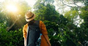 Mulher de viagem com trouxa que aprecia na exploração e que trekking na floresta tropical tropical de Ásia, viajante do turista n fotos de stock