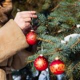 Mulher decorações de suspensão de um Natal no close up do abeto Foto de Stock