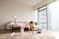Mulher desportiva nova que dá certo em casa, treinamento em linha da aptidão imagem de stock