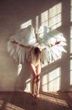 Mulher do anjo Imagens de Stock