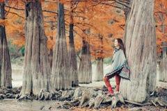 Mulher do estilo de Boho que anda no parque do outono foto de stock royalty free