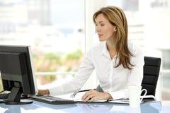 Mulher do executivo empresarial Imagens de Stock