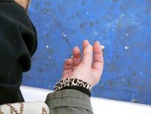 Mulher do fumador Imagens de Stock