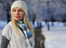 Mulher do inverno com chapéu e o lenço feitos malha sobre árvores da aleia fotografia de stock royalty free