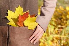 Mulher do outono nas folhas Fotografia de Stock