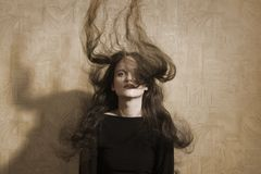 Mulher do retrato do vintage com cabelo longo alargado Imagem de Stock