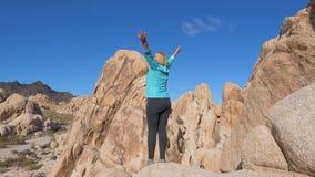 Mulher do retrato que está em The Edge de Cliff Raised Hands Up And ao lado vídeos de arquivo