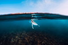 Mulher do surfista para relaxar e sentar-se na prancha Surfe a menina no oceano azul imagens de stock