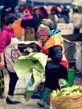 Mulher do tribo da flor imagens de stock
