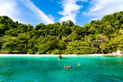 Mulher do turista que mergulha na ilha tropical em Tailândia foto de stock