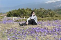 Mulher do turista que senta-se em um prado com açafrões de florescência roxos Imagens de Stock