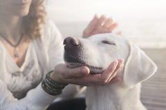 A mulher doce acaricia delicadamente seu cão fotografia de stock