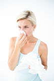 Mulher doente que funde seu nariz Fotografia de Stock Royalty Free
