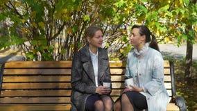 Mulher dois que senta-se no banco e que fala no parque do outono video estoque