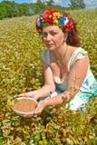 A mulher dos anos médios com uma grinalda na cabeça guarda uma bacia com trigo mourisco no campo do trigo mourisco de florescênci Imagem de Stock