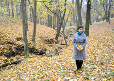 A mulher dos anos médios custa na madeira do outono entre o amarelo Fotos de Stock Royalty Free