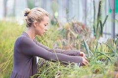 Mulher dos floristas que trabalha na estufa Imagens de Stock Royalty Free