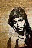 Mulher dos grafittis na parede de madeira ilustração do vetor