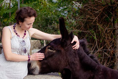 Mulher e burro Imagem de Stock