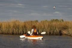 Mulher e cão pequeno que kayaking no Golfo do México com os pássaros que voam em cima fotos de stock