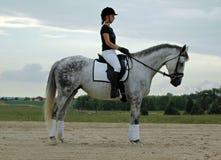 Mulher e cavalo Foto de Stock