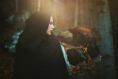 Mulher e falcão encapuçados escuros imagem de stock