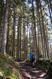 Mulher e homem, caminhando, cumes, Áustria Imagem de Stock Royalty Free
