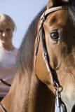 Mulher e seu cavalo Imagem de Stock