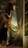 Mulher e tela Foto de Stock Royalty Free