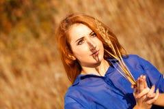 Mulher em campos dourados - estilo de vida Fotografia de Stock Royalty Free