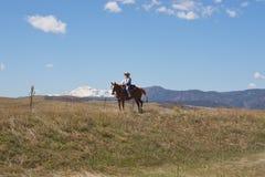 Mulher em horseback Fotos de Stock
