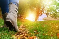 Mulher em sapatas e em calças de brim cinzentas que anda no trajeto de floresta do outono imagens de stock