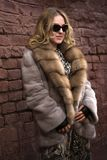 Mulher em um casaco de pele Foto de Stock Royalty Free